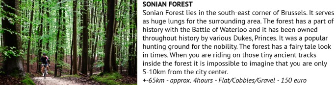 sonian-forest
